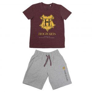 Conjunto verano Harry Potter Hogwarts